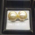 Southsea pearl